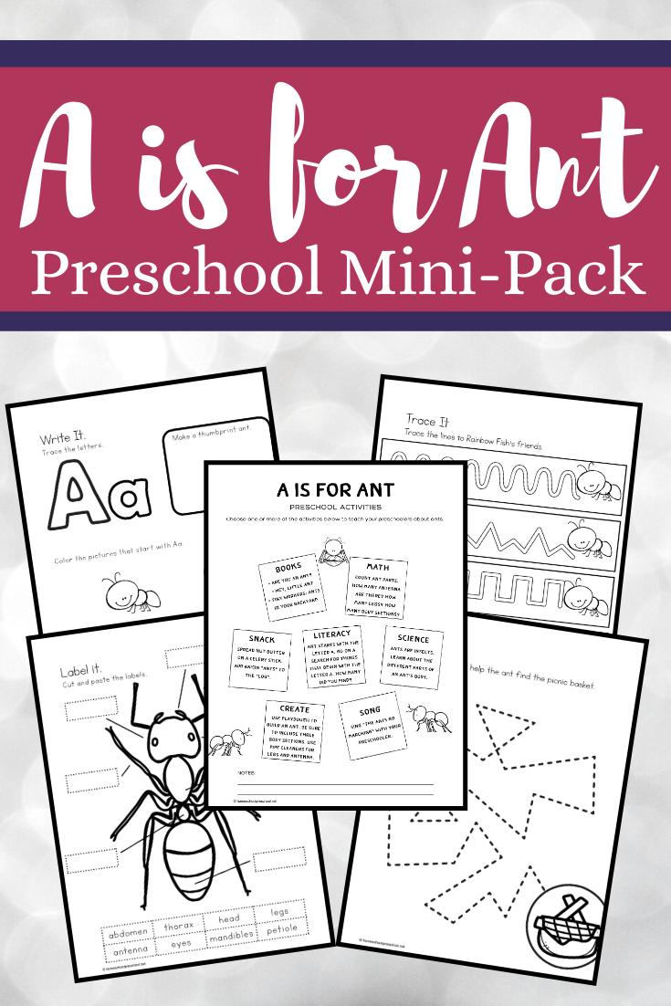 A Is For Ant Preschool Printables Preschool Printables Insects Preschool Preschool Activities [ 1102 x 735 Pixel ]