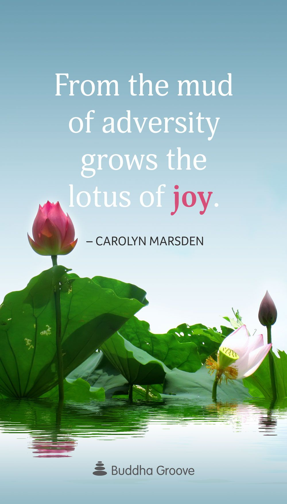 Inspiration From The Lotus Flower Spirituality Pinterest Lotus