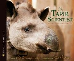 Tapirs, shy loners, are hard to find and this makes them hard to save and they are rapidly disappearing.  Pati Medici and her team are trying to save the tapir and the ecosystem it lives in.