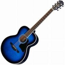 Tokyo Gakki Com Guitar Acoustic Guitar Electric Bass