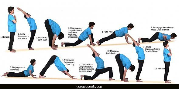 Can push ups lose belly fat photo 9
