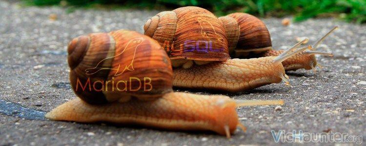 Cómo habilitar log slow queries en MySQL o MariaDB -  Cuando montamos bases de datos o instalamos scripts de terceros nos podemos encontrar con problemas de rendimiento. Para analizar un poco más en profundidad de dónde pueden venir esos problemas deberíamos activar log slow queries en MySQL para poder revisar que no sea alguna query con la que se nos ha ido la mano a []  La entrada Cómo habilitar log slow queries en MySQL o MariaDB aparece primero en VicHaunter.org.