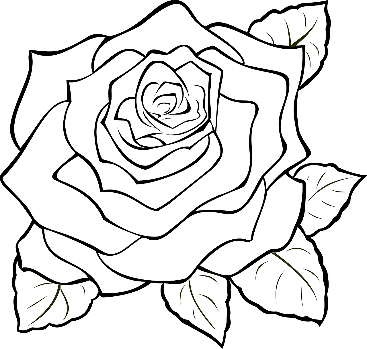 photo relating to Printable Pictures of Roses identify How toward produce drawing of rose: 14 cost-free printable rose stencils