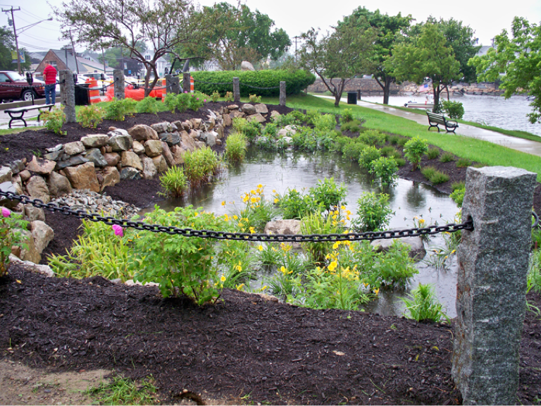 Bioretention Basin Google Search With Images Sustainable
