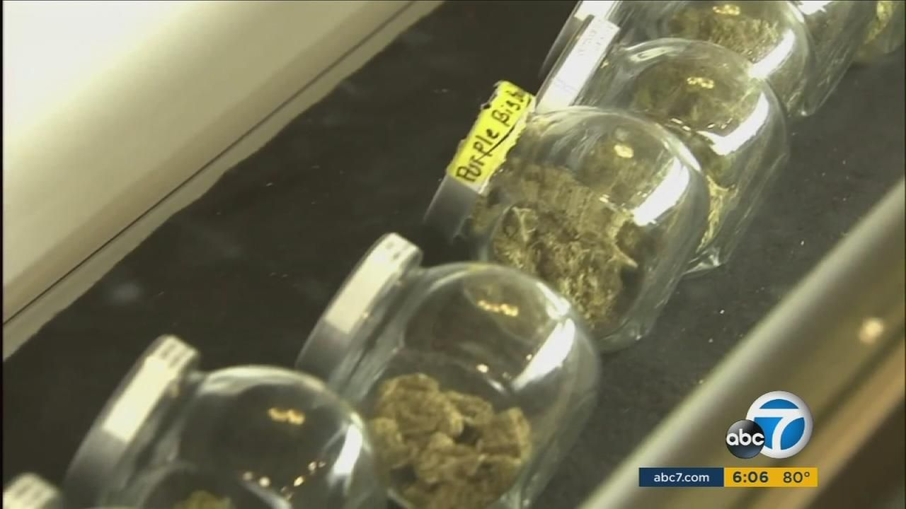Pot festivals could be headed to SoCal fairgrounds