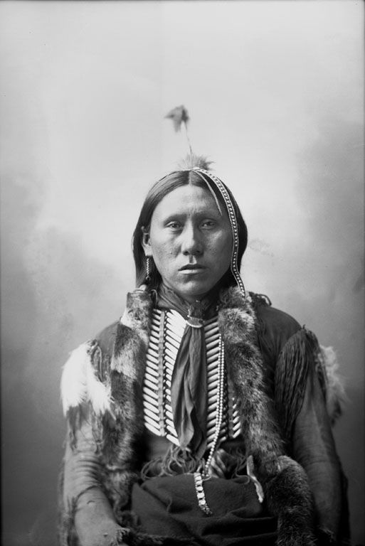 Similar to other Indian tribes, there are several bands of Cree Indians. Description from thecoincidentaldandy.blogspot.com. I searched for this on bing.com/images