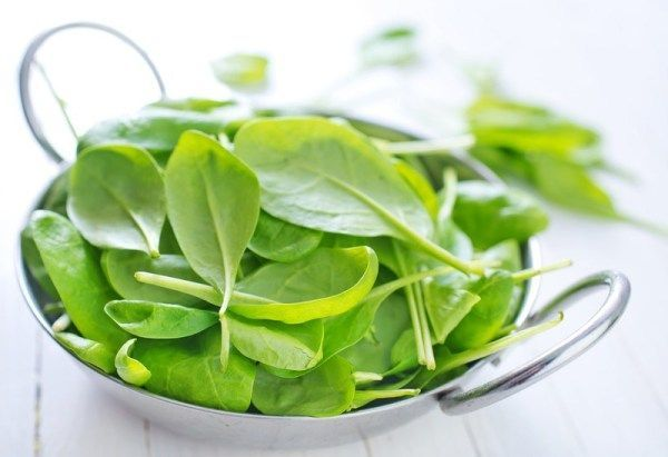 Hydroponic gardening 399905641912125329 -  This simple guide will help you learn how to start growing hydroponic spinach! #hydroponics #spinach #howto #hydroponicvegetables  Source by nosoilsolutions
