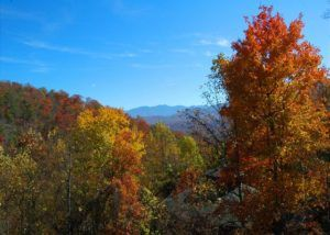 View of the Smoky Mountains in the fall season