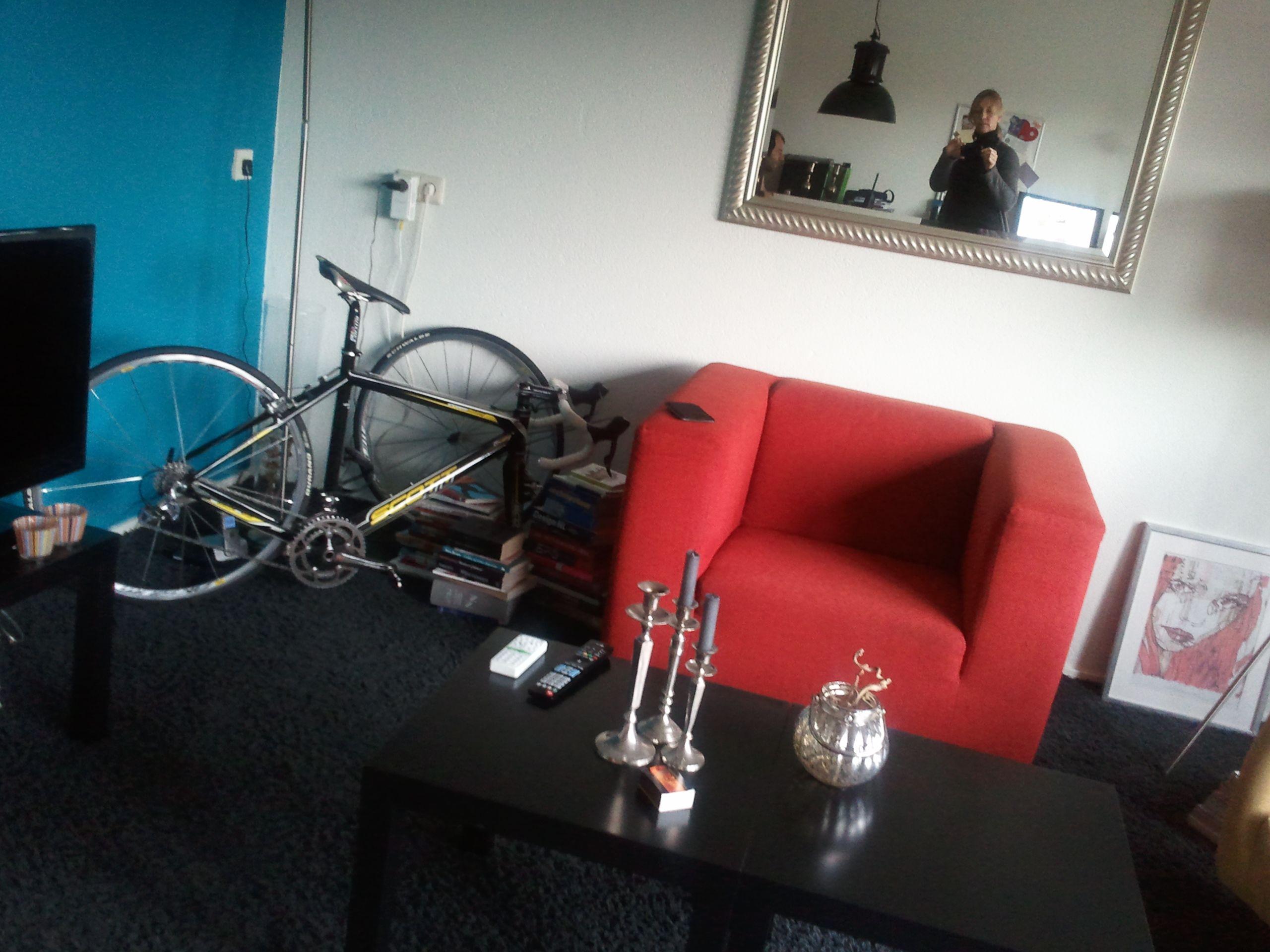 Klein huis mijn racefiets in de woonkamer als persoonlijke kunst