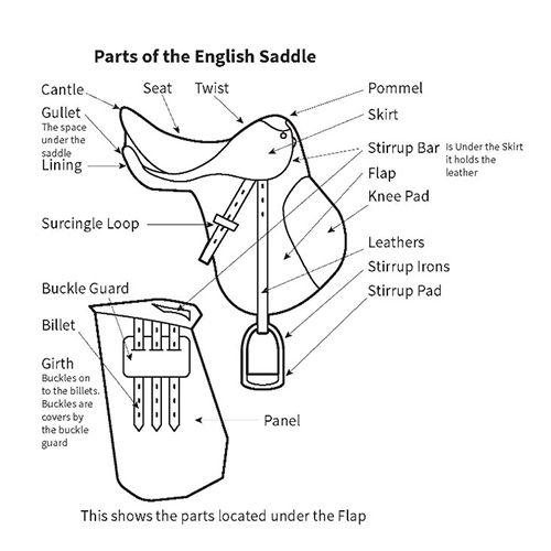 diagram explaining parts of an english saddle
