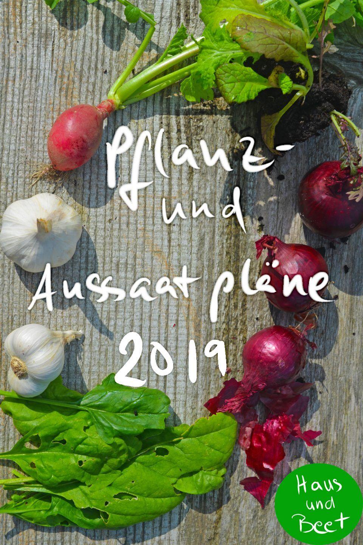 Pflanz- und Aussaatpläne 2020 mit Hilfe von Mischkultur - Haus und Beet