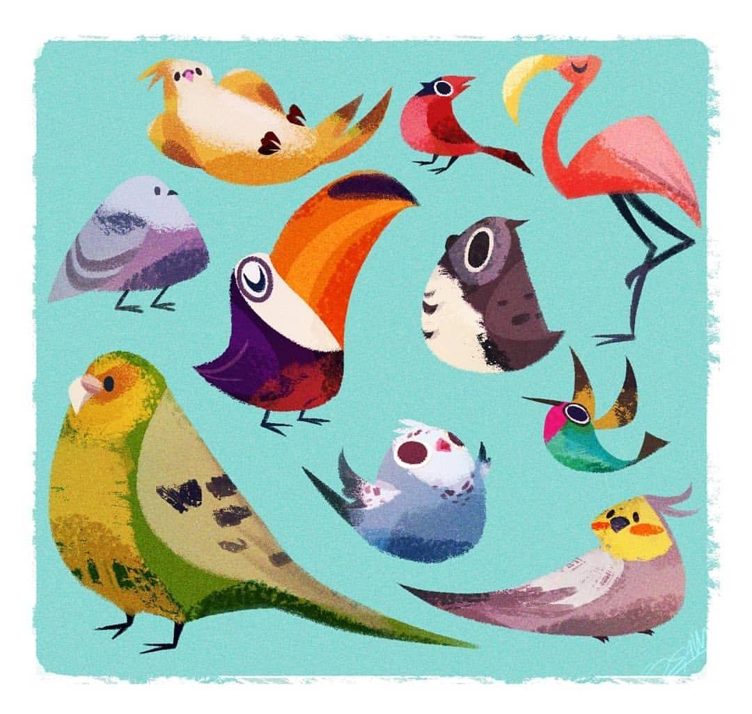 Little Birbs Birds Drawing Character Design Art Illustration