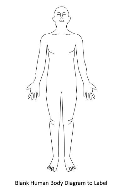 fibromyalgia body diagram
