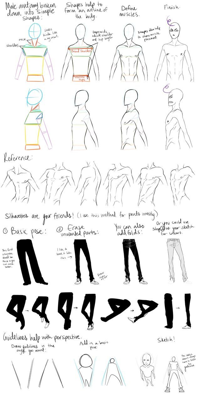 Male Anatomy Reference and Perspective Tips by ~DeviantTear on ...