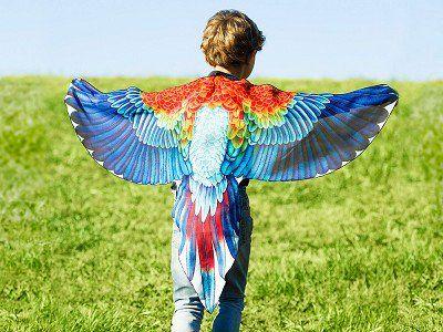 Playful Apparel: Bird Play Wings   Fun facts about birds ...
