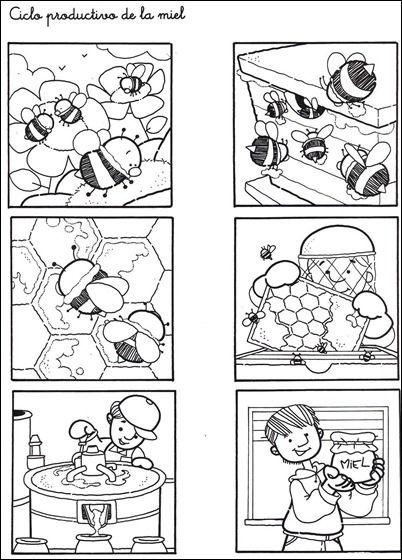 Secuencia temporal sobre el ciclo productivo de la miel para ...