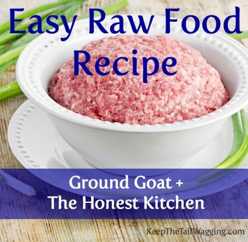 Easy raw food recipe raw paws pet ground goat and the honest easy raw food recipe raw paws pet ground goat and the honest kitchen solutioingenieria Choice Image