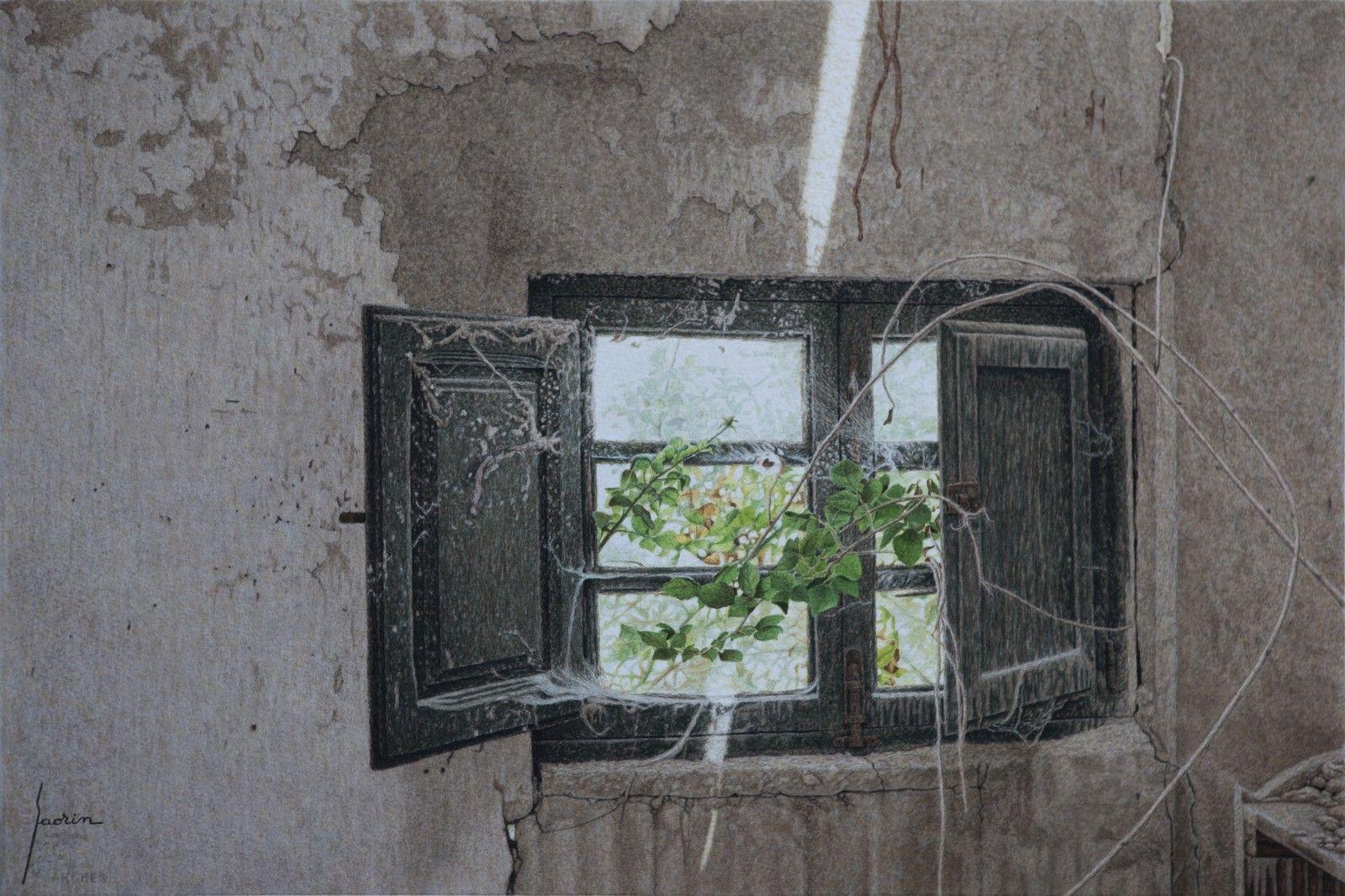 Autor: Jesús Lozano Saorin Titulo/title: Espinas en la ventana  Tamaño/size: 37,6x56,3 cm. Técnica/technics: Acuarela / Watercolor