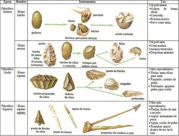 Paleolítico Evolución Humana Ciencias De La Tierra Habilidades De Supervivencia