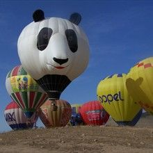 Panda-Monium Hot Air Balloon Flights -     panda-air-bearballoonflights.com From the owner: Offering something different for those who crave sky high adventure. We offer only PRIVATE sunrise/sunset flights for two aboard the most unique, adorable Hot Air Balloon in the southern California skies. A seven story tall (67 feet) Panda Bear Face ...complete with large cheeks, nose and two big ears.