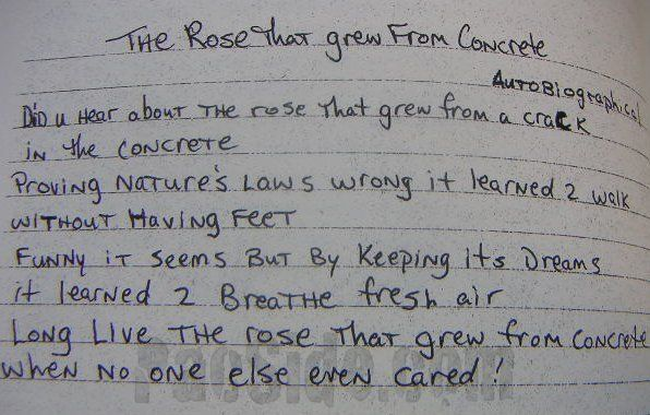 The Rose Tha Grew From Concrete Tupac Poems Quotes Deep