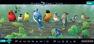 Hautman Brothers Songbirds Panoramic 750pc Jigsaw Puzzle by Buffalo Games. $10.85. Bonus poster inside. 100% made in the United States. When assembled, these puzzles are over three feet wide. The Hautman Brothers' artwork has been displayed in both the Smithsonian Institute and the Oval Office. From the Manufacturer                Hautman Brothers Songbirds Panoramic 750pc Jigsaw Puzzle by Buffalo Games                                    Product Description    ...