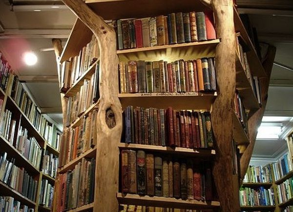 Image Result For Tree Trunk Shelf Unique Bookshelves Unique Furniture Cool Bookshelves