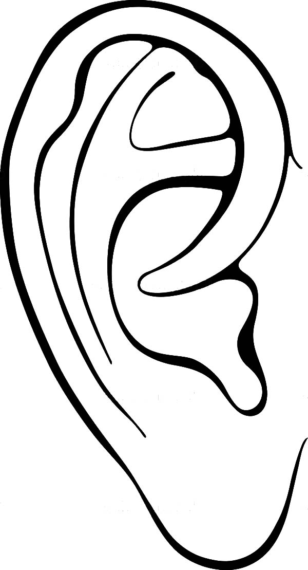 Preschool Kid Learning Ear Coloring Pages Kids Play Color In 2020 How To Draw Ears Human Ear Coloring Pages