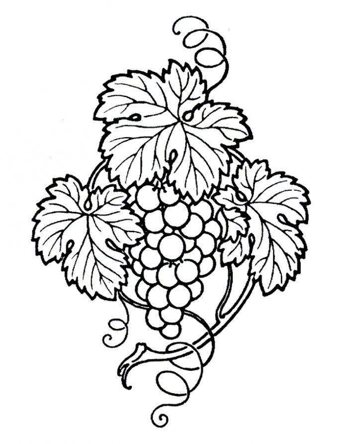 эскизы картинок для вышивания фрукты год, эстонии эти