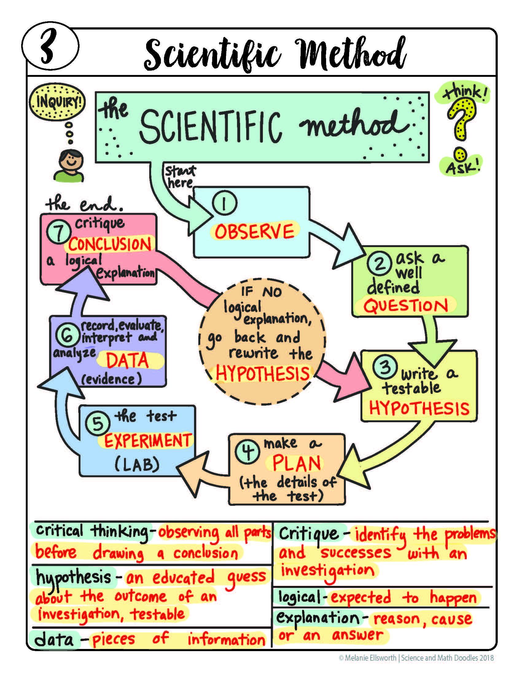 Freebie Scientific Method Graphic Organizer So Fun And Easy To Use Scientific Method Graphic Organizer Scientific Method Biology Lessons