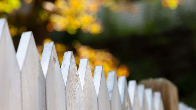 Contemplating a fence next to your neighbors? Here's some fence etiquette advice.  http://www.realtor.com/advice/home-improvement/how-to-build-a-fence-good-neighbor/?is_wp_site=1&cid=soc_2017editorial_20161004_66563876