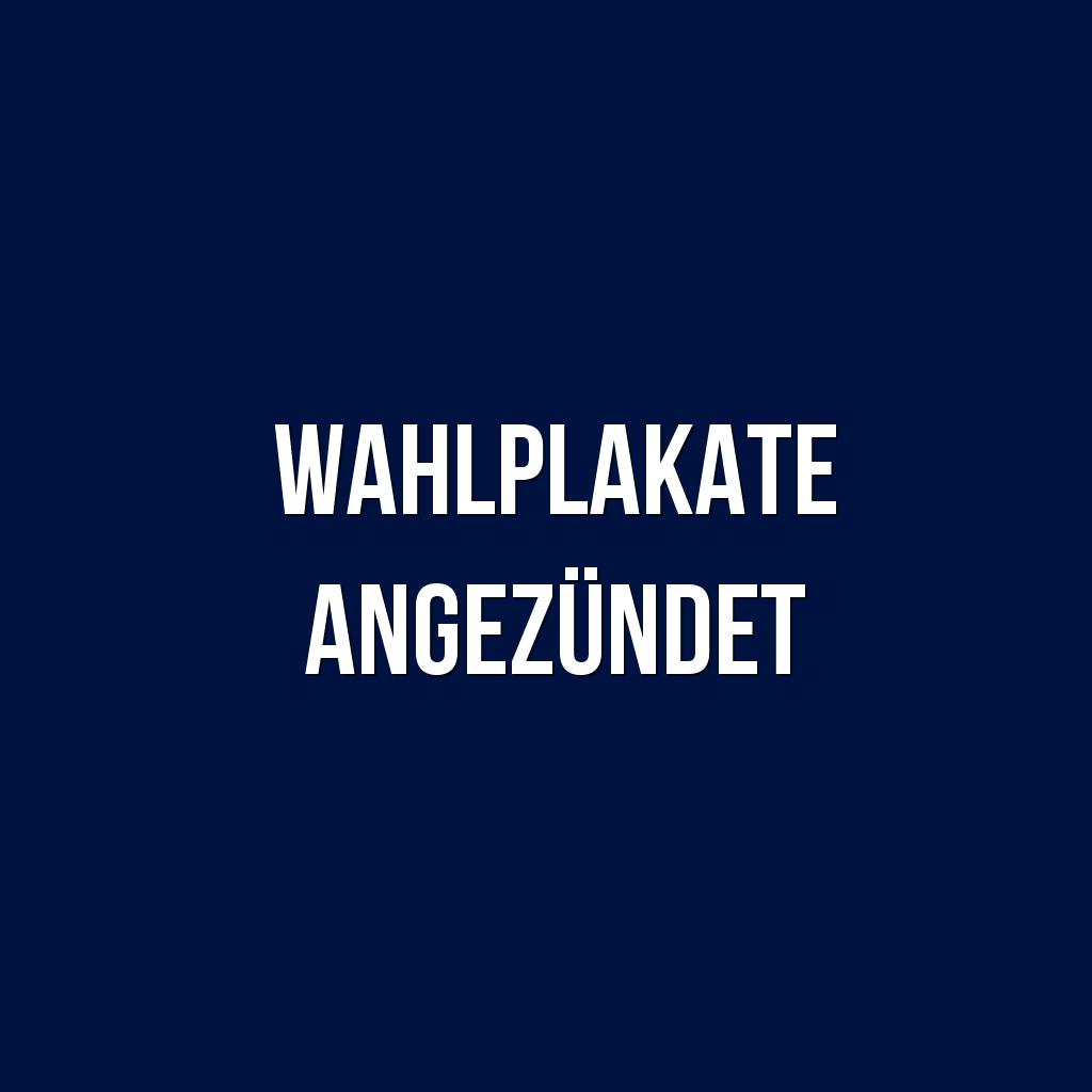 Wahlplakate Angezundet Nr 0950 Heute Fruh Brannten In Neu Hohenschonhausen Mehrere Wahlplakate Gegen 5 15 Uhr Stellen P Wahlplakate Plakat Polizeibeamter