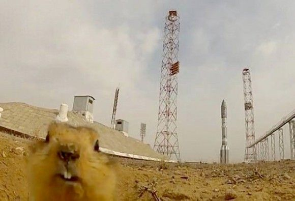 O hi, I see you are launching a Rocket today, that's AWESOME!