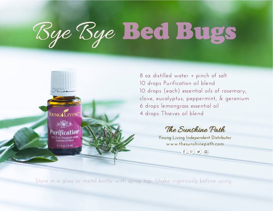 For bed bugs | Essential oils! | Bed bugs essential oils