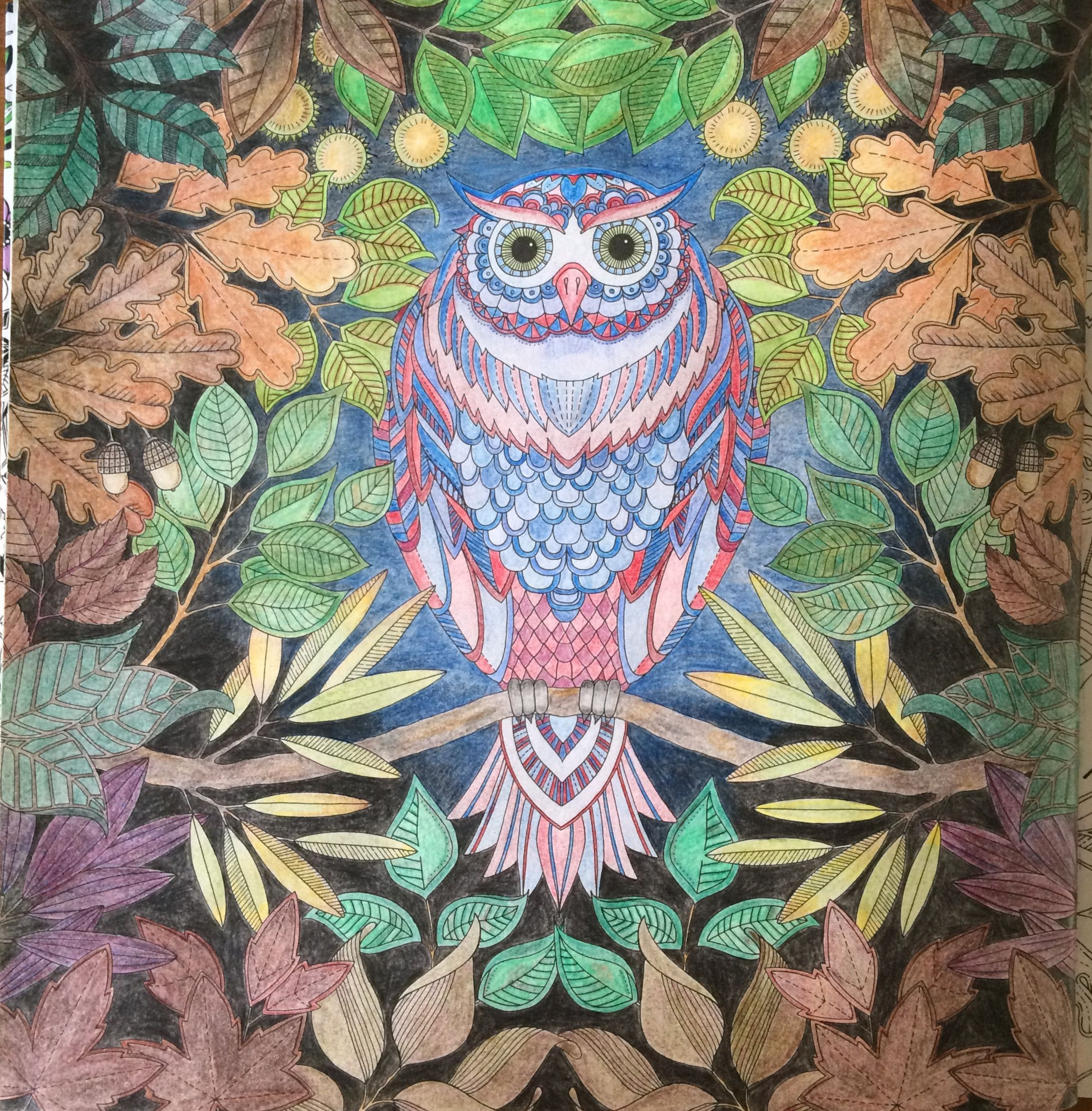 Kleurplaat Uit Mijn Geheime Tuin Door Johanna Basford Geheime Tuin Tuin Kleuren