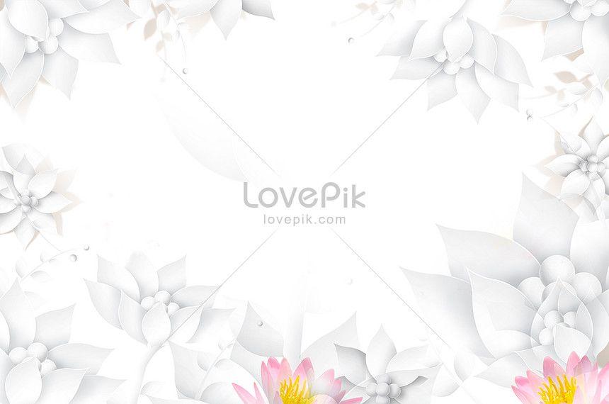 خلفية زهرة بيضاء جديدة White Background Flowers Image