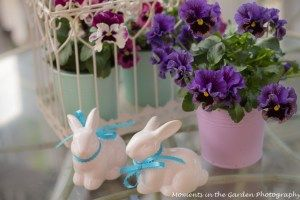 Happy Easter - MOMENTS IN THE GARDEN PHOTOGRAPHY