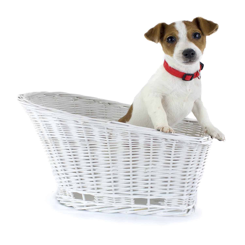 Cape May Rear Mount Bike Basket (White) Dog friends, Dog