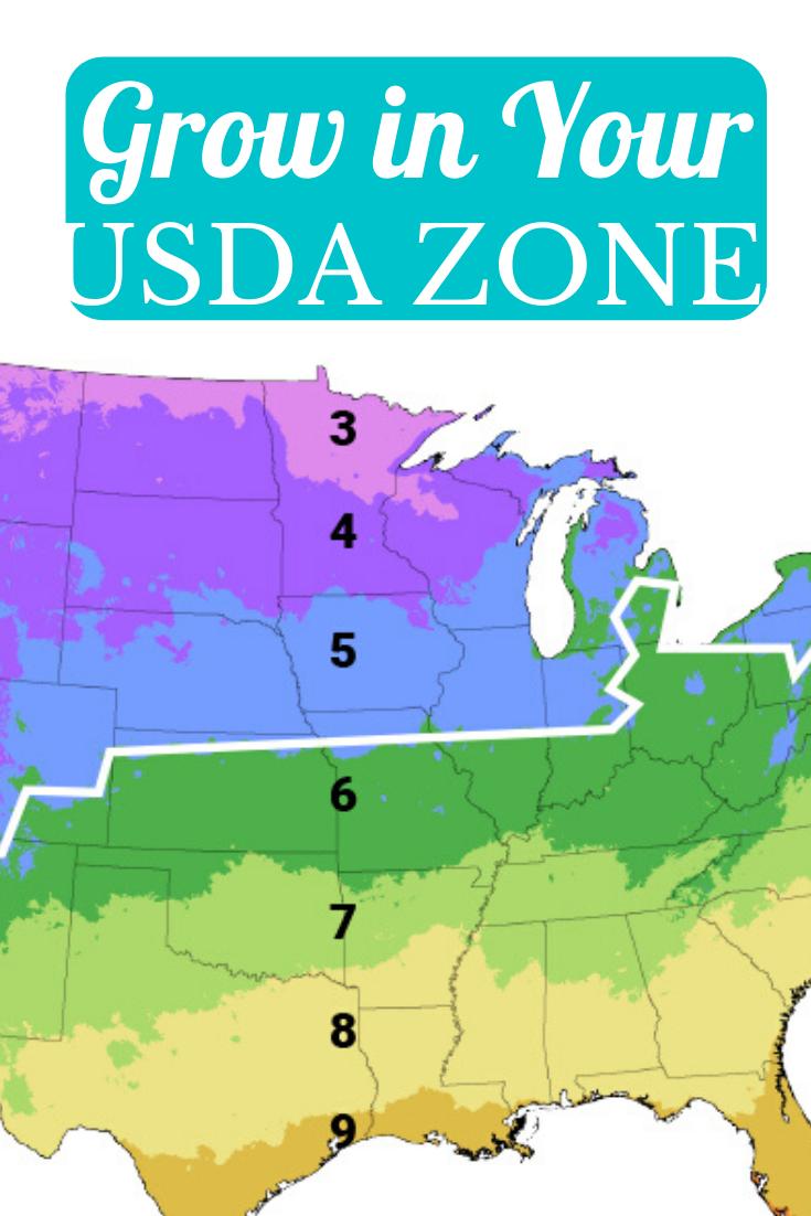 ada045ee3bcfafaead98d3ecd15b6b88 - What Gardening Zone Is Minnesota In