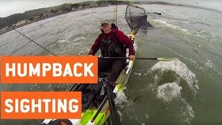 Fisherman Has Close Encounter With Humpback Whales  While paddling on his kayak on Half Moon Bay this fisherman got a once in a lifetime experience with mother nature and a close encounter with a few wild animals. Two humpback whales breached to feed and bumped into his boat while he filmed the whole thing on his GoPro. Original Link: https://www.youtube.com/watch?v=4B6PKrI4mps SUBSCRIBE for awesome videos every day!: http://bit.ly/JukinVideo Submit your video here…