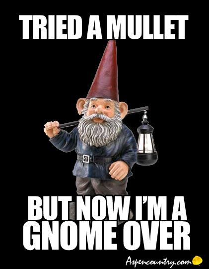 It S Gnome Joke Tried A Mullet But Now I M A Gnome Over Hair Don Ts Bad Hair Day
