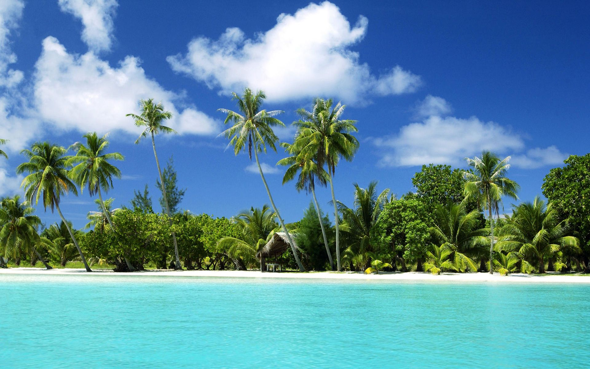 Most Beautiful Tropical Beaches Hd Widescreen 11 High Definition Wallpapers HD