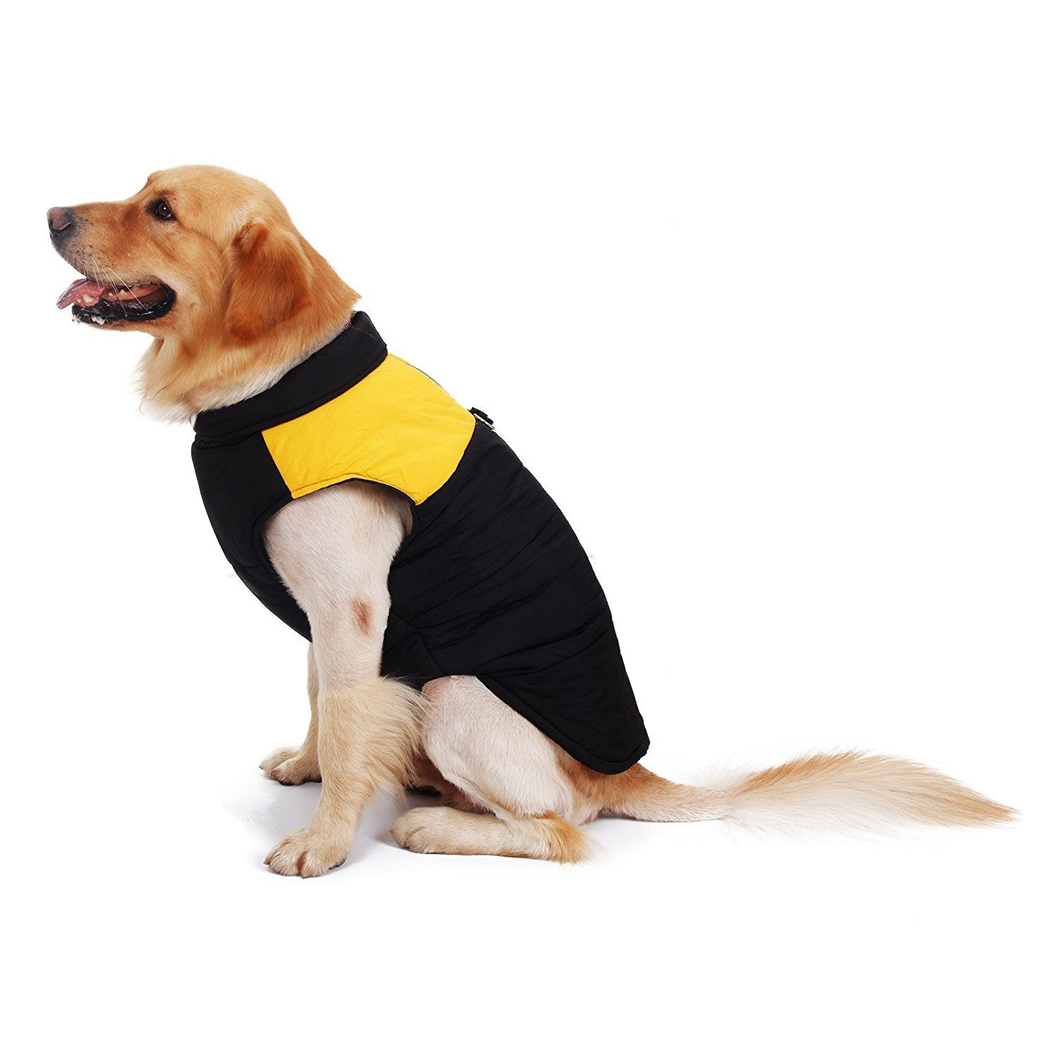 Pawz Road Pet Clothes For Small Medium And Large Dogs