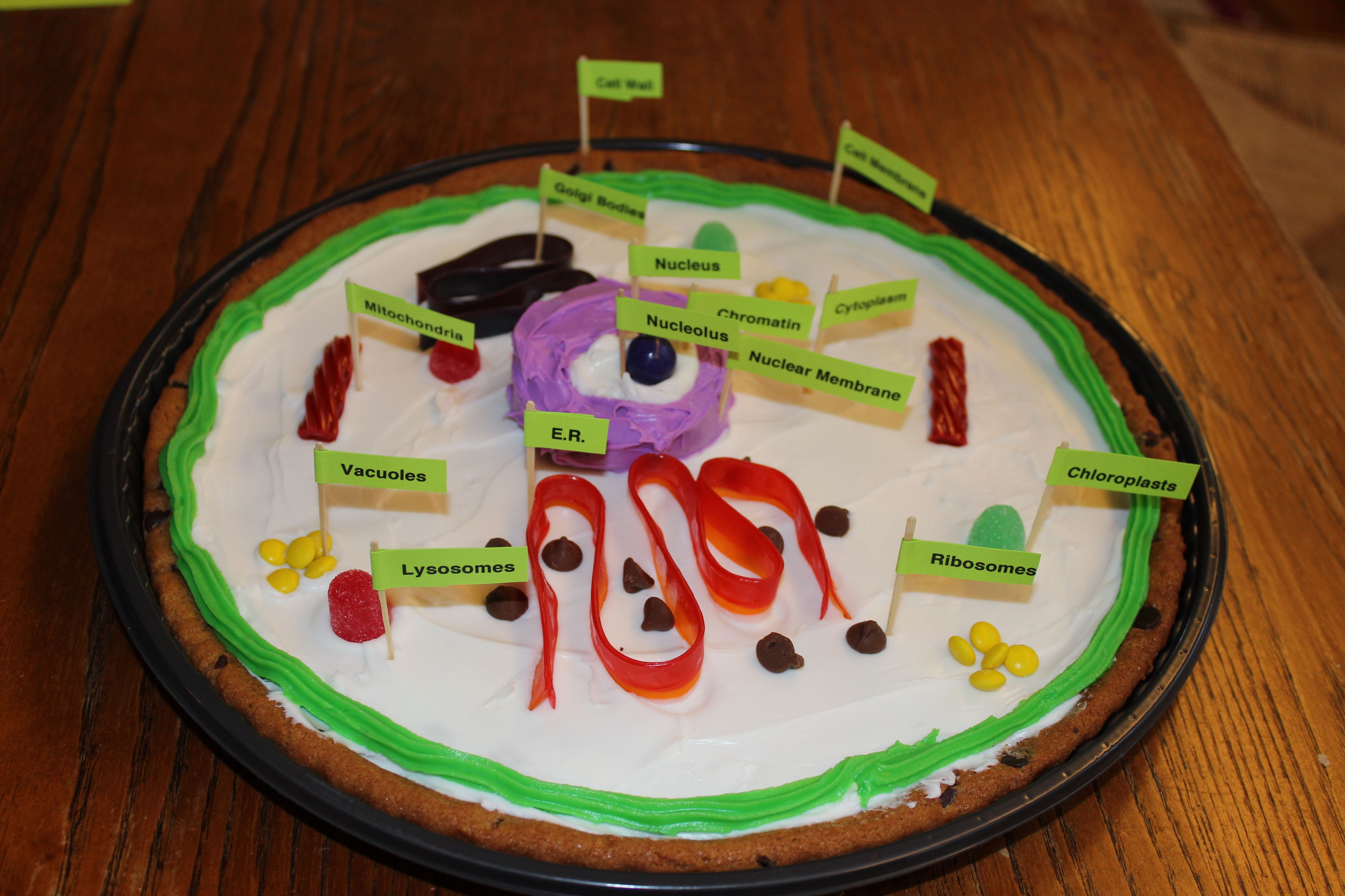 Make A Cell Science Project Using A Cookie Cake With Images