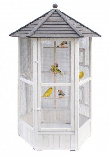 Comment installer une volière ? - Blog Bird aviary, Bird and Dog cat - comment changer une porte