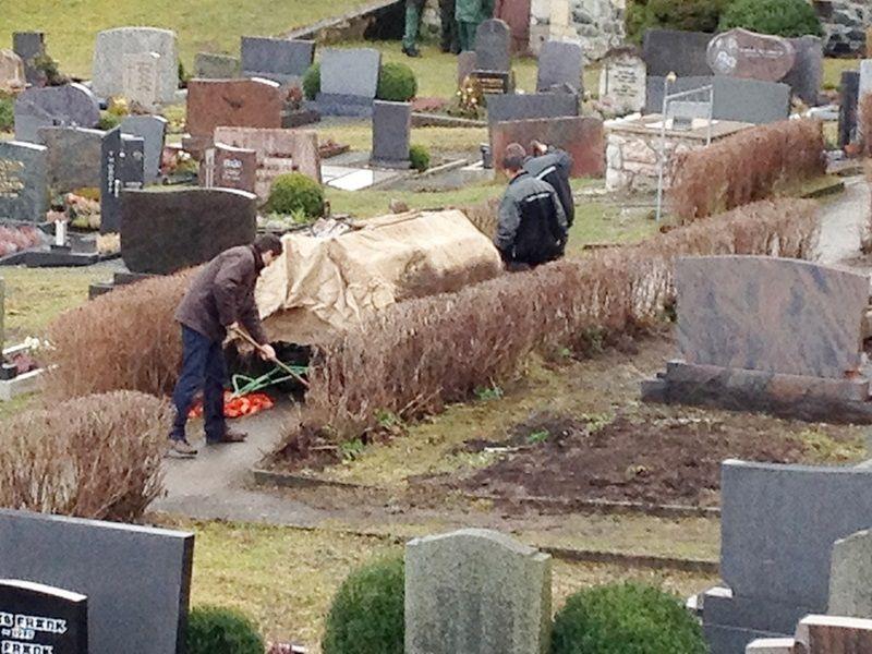 Suche nach Tag: vivian schmitt
