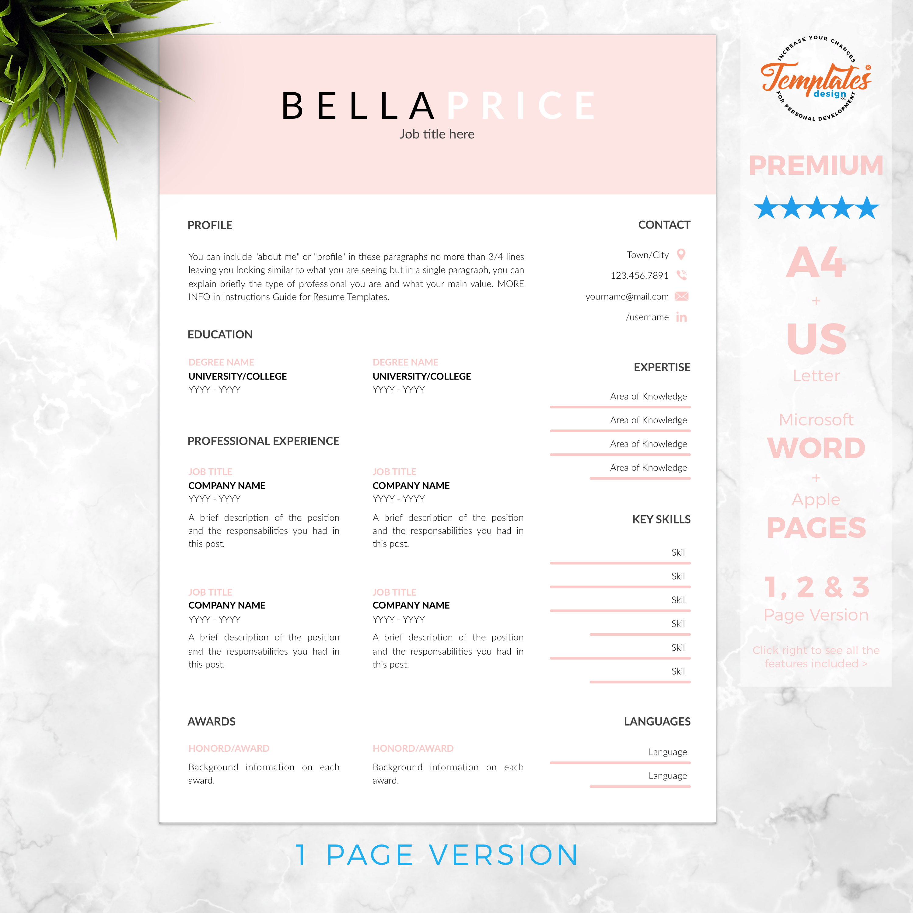 Clean and Simple Resume Template for Word and Pages