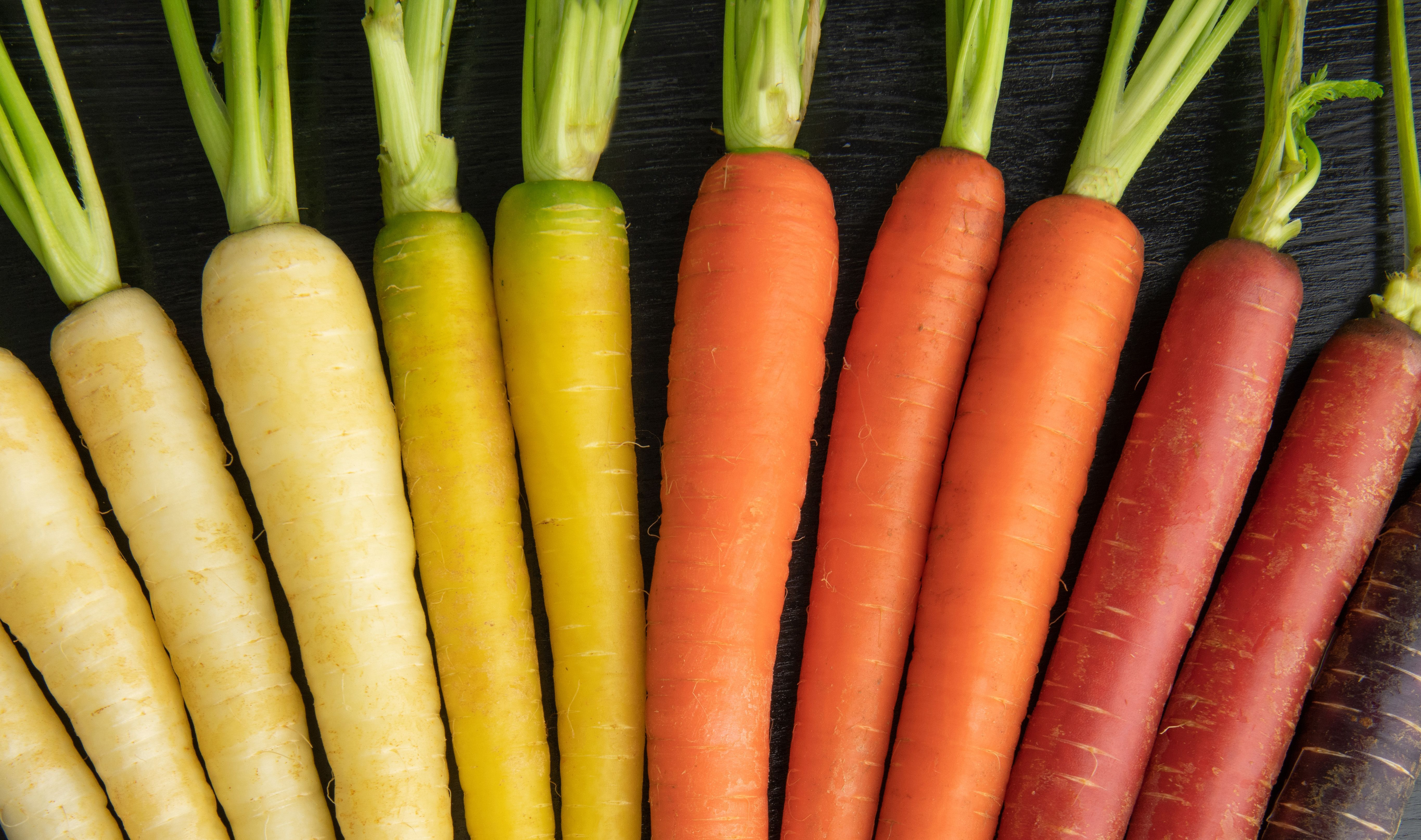 Happy St Patrick S Day We Hope Our Rainbow Carrots Lead You To A Pot Of Gold Rainbow Carrots Organic Vegetables Carrots