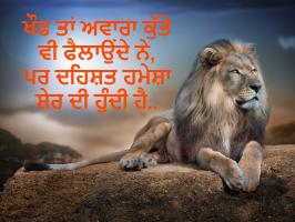 New Attitude Status in punjabi, Best Attitude Status