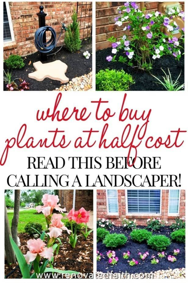 Best Front Yard Landscaping Ideas On a Budget (DIY ...